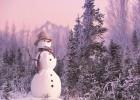 2013年的第一场雪,如约而至