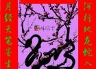 2013蛇年春节到来,本站在此为广大博友贺新年